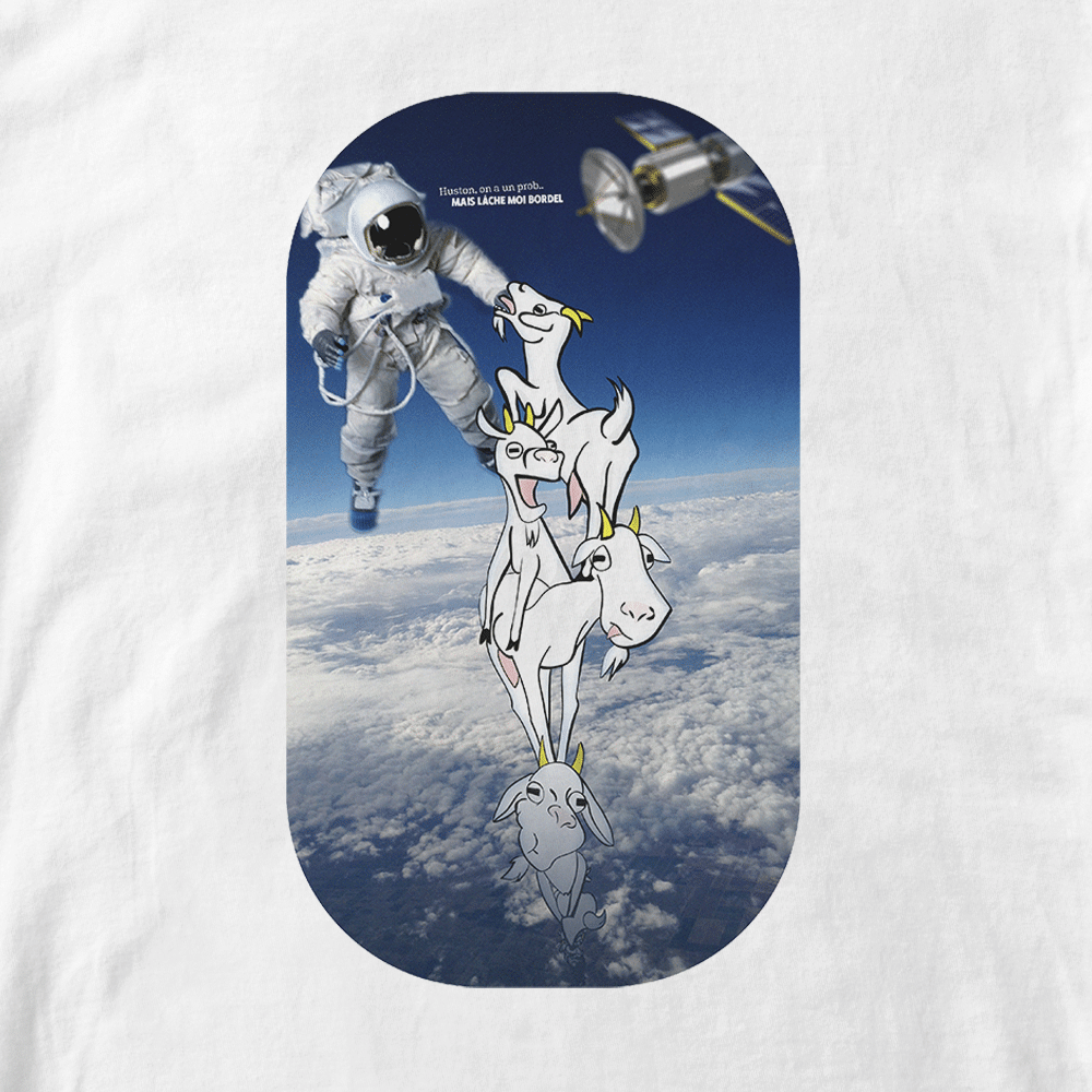 T-shirt Huston. Photo/dessin pile de chèvres et cosmonaute espace. Réalisation Lapin-Cyan Vilain le singe. Style cartoon fond réaliste. Format A4